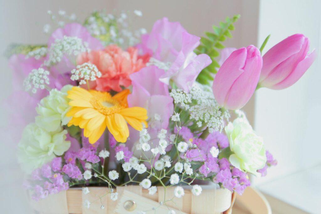 穏やかな日ざしに春の訪れを感じます。画像